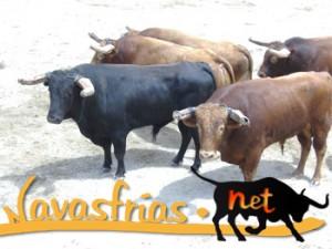 Navasfrias - LAGEOSA     DA   RAIA